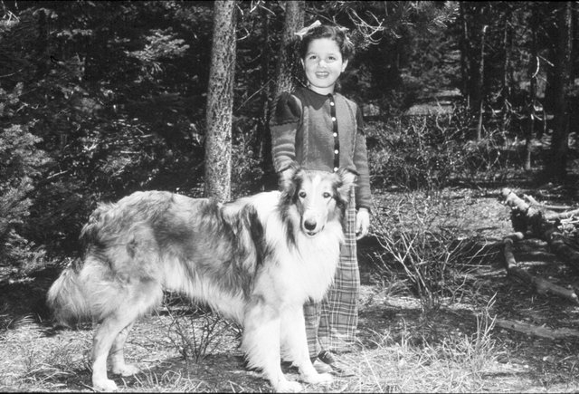 susan-with-lassie-in-son-of-lassie-1945